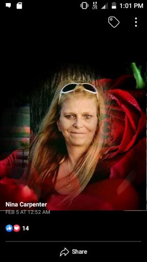 Nina Carpenter — Wanna Be Crime Boss Queen